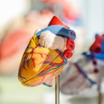 spiritueel leven je kan helpen een gezonde bloeddruk